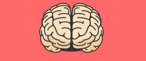Six idées reçues sur la psychologie évolutionnaire !
