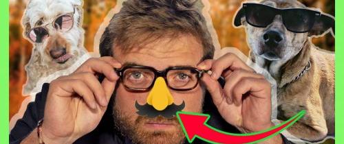 Le nez a évolué pour porter des lunettes – adaptationnisme – psycho évo #3