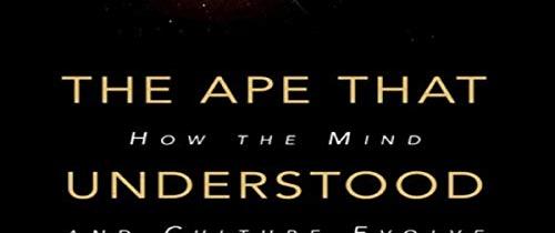 """Mon avis sur """"The ape that understood the universe"""", de Steve Stewart-Williams"""